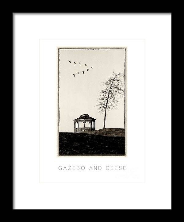Gazebo Framed Print featuring the photograph Gazebo And Geese Poster by Mike Nellums