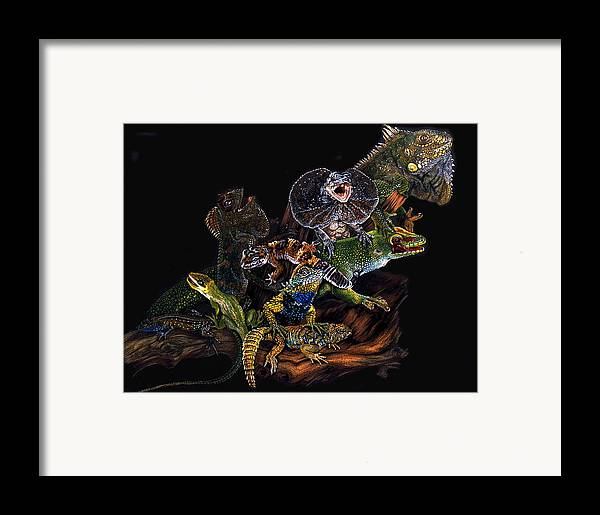 Lizards Framed Print featuring the drawing Gems And Jewels by Barbara Keith