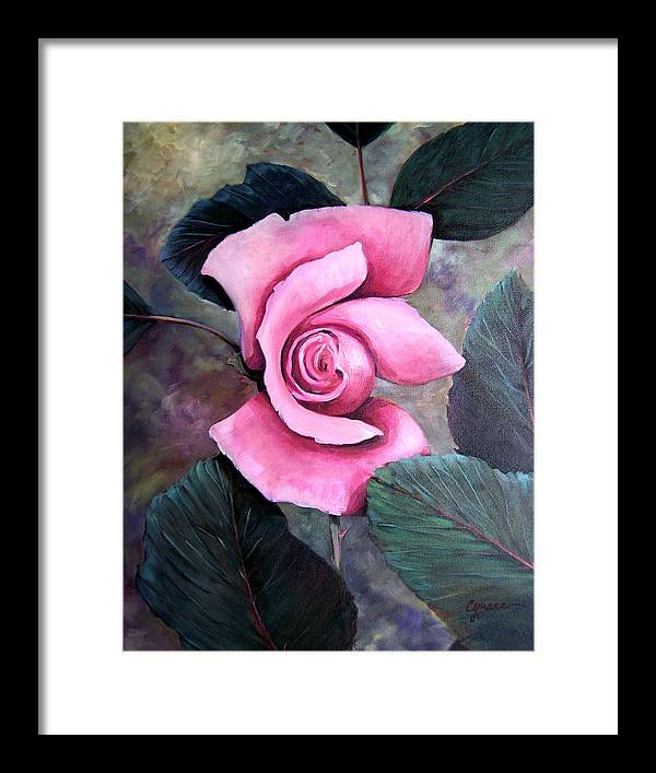 Rose Floral Pink Oil Painting. Oil Framed Print featuring the painting Generational Rose by Cynara Shelton