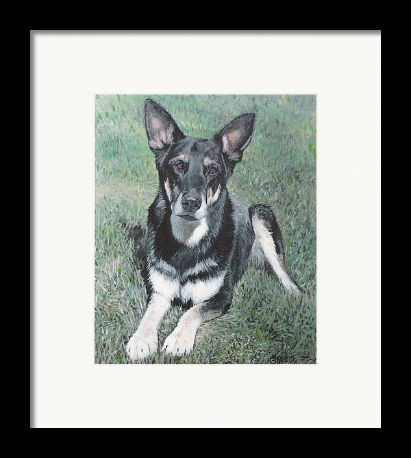 Pet Portrait Framed Print featuring the painting German Shepard by Steve Greco