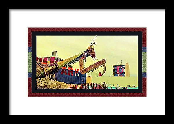Giant Preying Mantis 1 Framed Print featuring the photograph Giant Preying Mantis 1 by Shirley Anderson