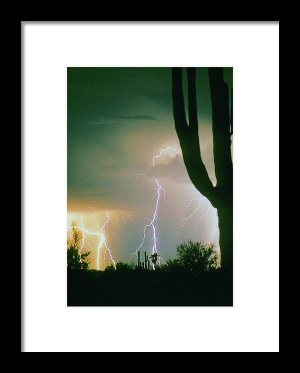 Lightning Framed Print featuring the photograph Giant Saguaro Cactus Lightning Storm by James BO Insogna