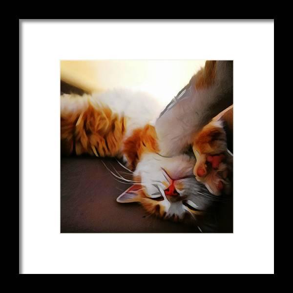 Animals Framed Print featuring the digital art Ginger Feline by Jarek Filipowicz