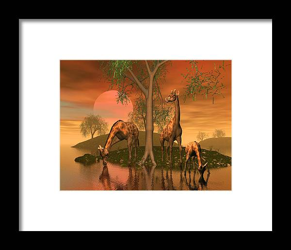 Animals Framed Print featuring the digital art Giraffe Family By John Junek by John Junek