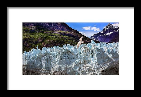 Glacier Framed Print featuring the photograph Glacier Bay by James Black