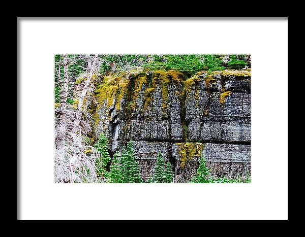 Framed Print featuring the photograph Glacier Np Moss by Matthew Justis