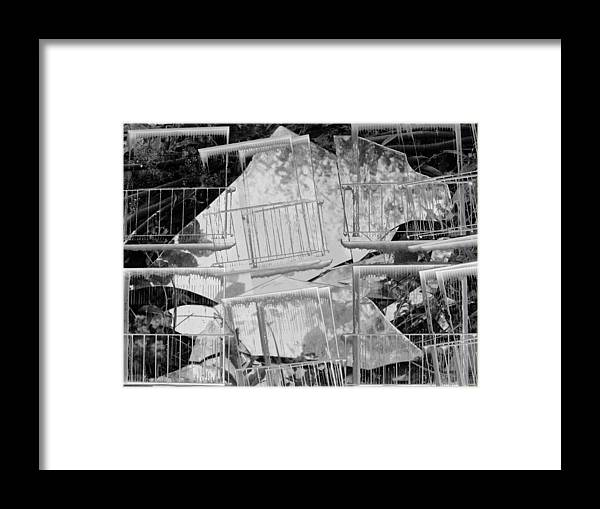 Artwork Framed Print featuring the photograph Glass by Radulescu Adriana Lucia