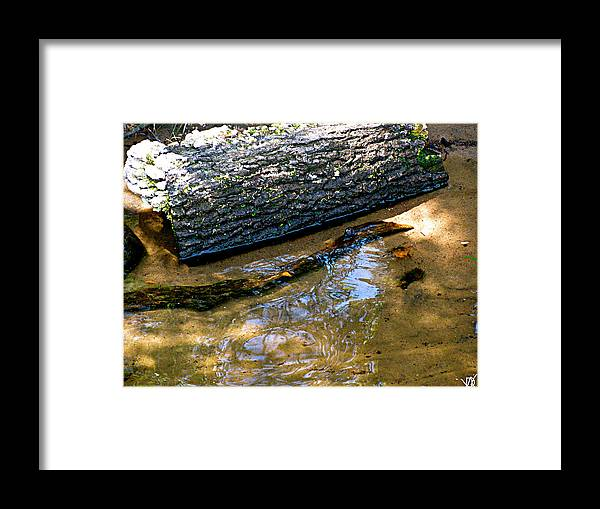 Glassy Water Framed Print featuring the photograph Glassy Water by Debra   Vatalaro