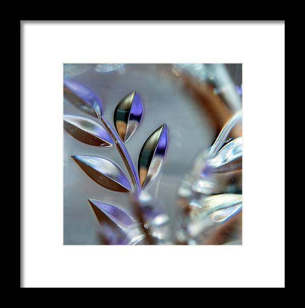 Leaves Framed Print featuring the photograph Glassy#2 by Jarmo Honkanen