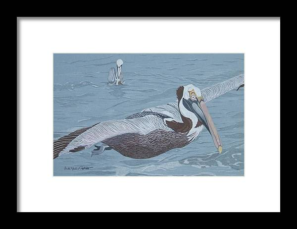 Pelican Framed Print featuring the painting Glider by Anita Putman