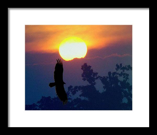 Sunset Framed Print featuring the photograph Gliding By The Sun by J R Seymour