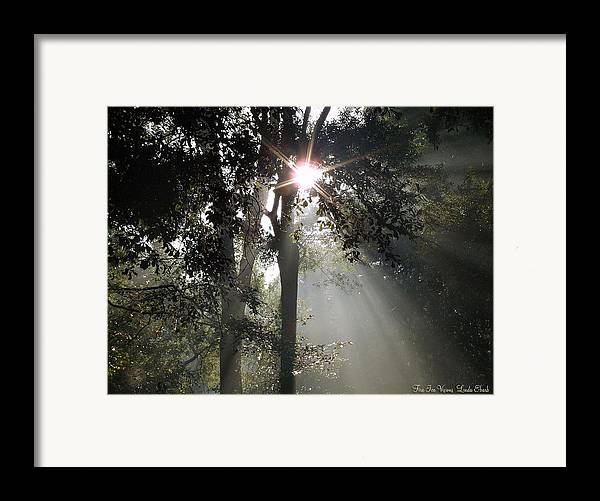 Morning Framed Print featuring the photograph Glorious Sunrise by Linda Ebarb