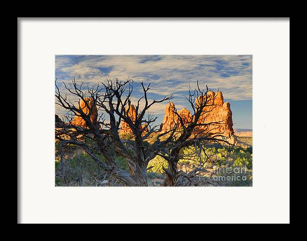 Arches Framed Print featuring the photograph Glove Rock by Dennis Hammer