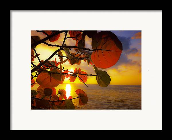 Beach Framed Print featuring the photograph Glowing Red II by Stephen Anderson