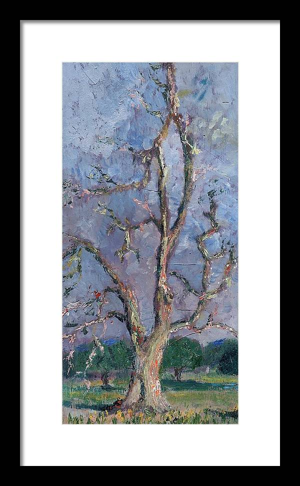 Oil Framed Print featuring the painting Gnarly Old Tree by Horacio Prada