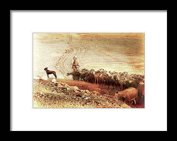 Goats Framed Print featuring the photograph Goatherd by Mal Bray