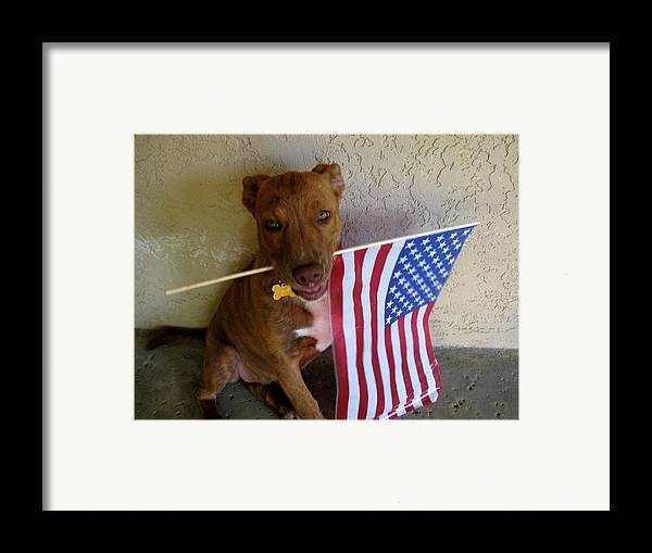 July 4th Framed Print featuring the photograph God Bless America by PJ Cloud