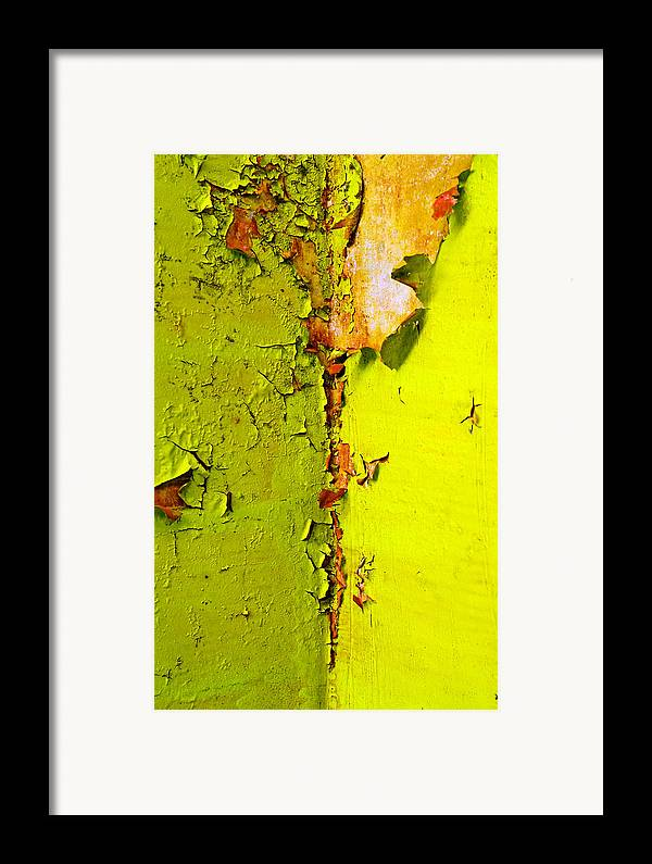 Skip Hunt Framed Print featuring the photograph Going Green by Skip Hunt