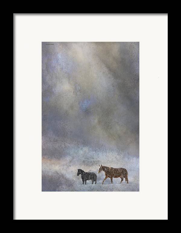Winter Framed Print featuring the photograph Going To Barn by Ron Jones