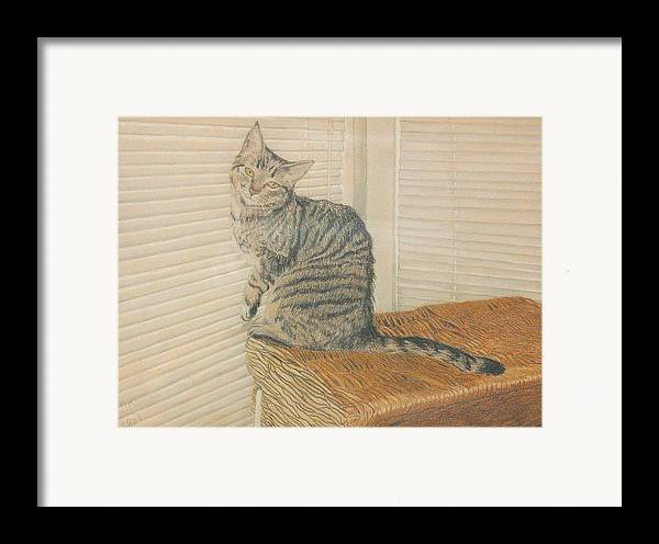 Tabby Cat Framed Print featuring the painting Goldberry by Miriam A Kilmer