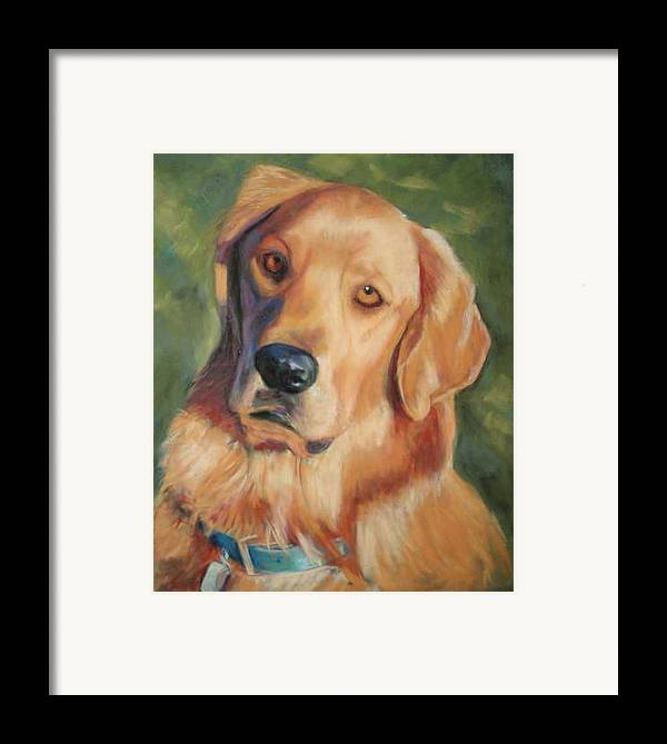 Golden Retriever Framed Print featuring the painting Golden Boy by Billie Colson