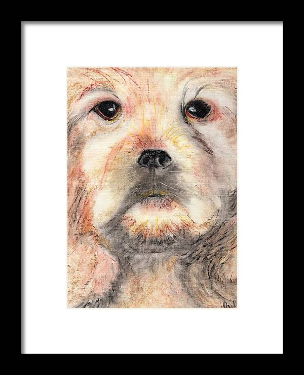 Oil Pastels Framed Print featuring the painting Golden Cocker by Pamela Wilson