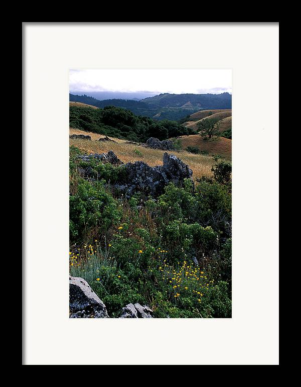 Landscape Framed Print featuring the photograph Golden Hills Of Summer by Kathy Yates
