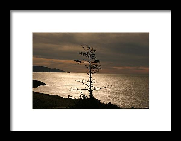 Golden Reflections Framed Print featuring the photograph Golden Reflections by Wes and Dotty Weber