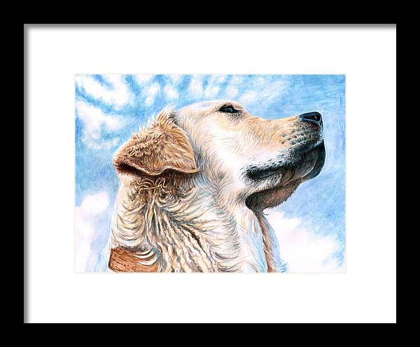 Dog Framed Print featuring the painting Golden Retriever by Nicole Zeug