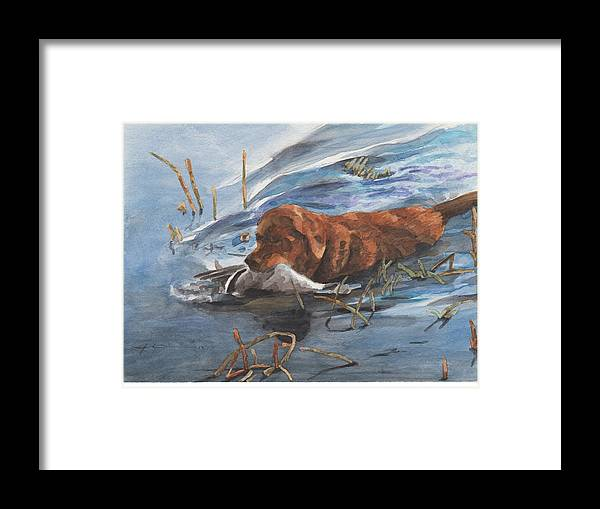 Www.miketheuer.com Golden Retriever With Duck Watercolor Portrait Framed Print featuring the drawing Golden Retriever With Duck by Mike Theuer