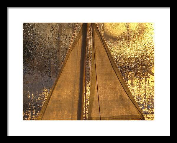 Golden Framed Print featuring the photograph Golden Sails by Lori Secouler-Beaudry