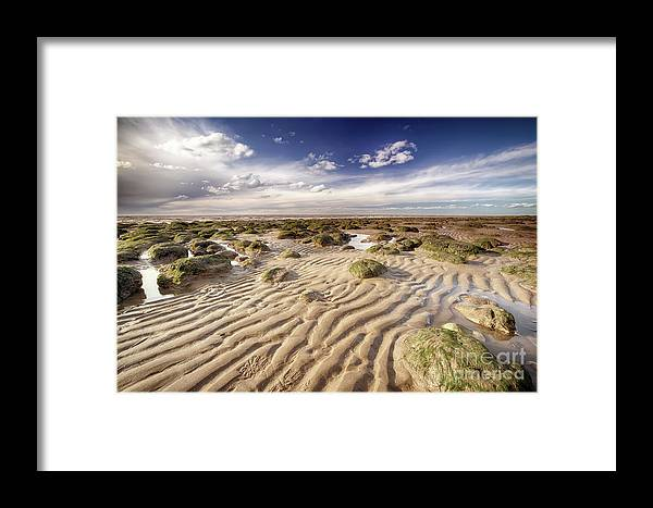 Sand Framed Print featuring the photograph Golden Sand Lines And Seaweed Rocks Of Norfolk by Simon Bratt Photography LRPS