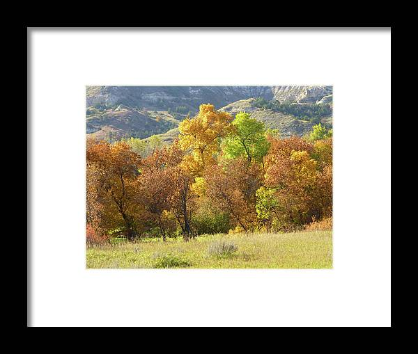 North Dakota Framed Print featuring the photograph Golden September by Cris Fulton