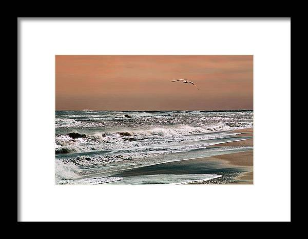 Seascape Framed Print featuring the photograph Golden Shore by Steve Karol