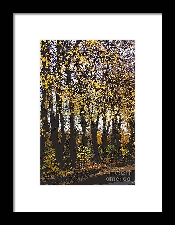Abstract Framed Print featuring the digital art Golden Trees 1 by Carol Lynch