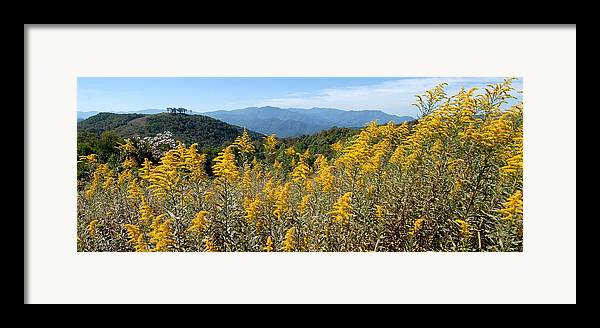 Mountain View Framed Print featuring the photograph Goldenrod Mountain View by Alan Lenk