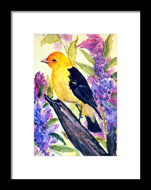 Birds Framed Print featuring the painting Goldfinch by Gail Kirtz