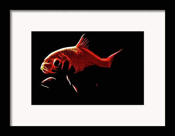 Goldfish Framed Print featuring the digital art Goldfish 1 by Tilly Williams