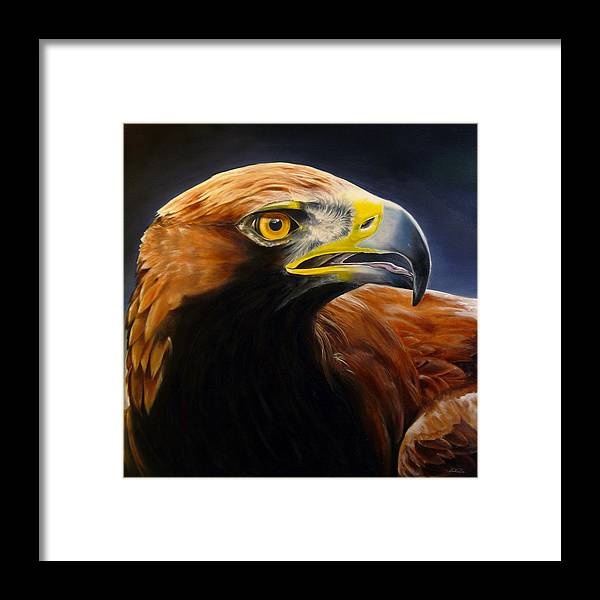 Golden Eagle Oil Painting Framed Print featuring the painting Goldie by Ken Hancock