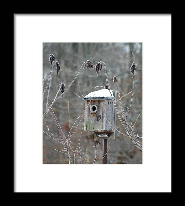 Bird House Framed Print featuring the photograph Gone South by Diane Merkle