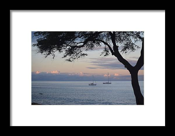 Boats Framed Print featuring the photograph Good Morning Boats by Samantha Peel