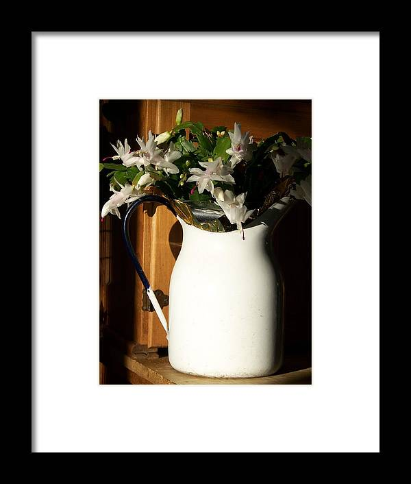 Flowers Framed Print featuring the photograph Good Morning Sunshine - Photograph by Jackie Mueller-Jones