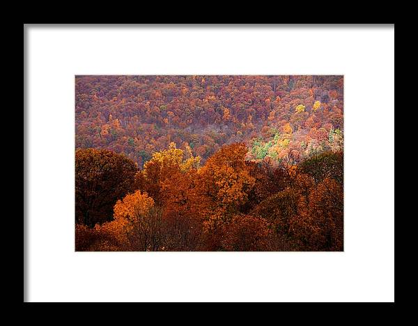 Mountains Framed Print featuring the photograph Good Tidings by Mitch Cat