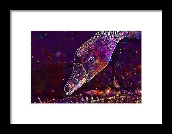 Goose Framed Print featuring the digital art Goose Bird Feather Water Bird by PixBreak Art