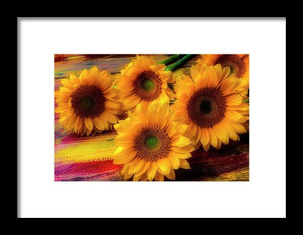 Gorgeous Lovely Framed Print featuring the photograph Gorgeous Lovely Sunflowers by Garry Gay