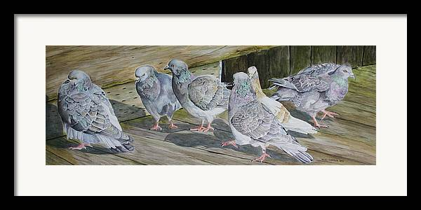 Pigeons Framed Print featuring the painting Gossiping by Helen Shideler