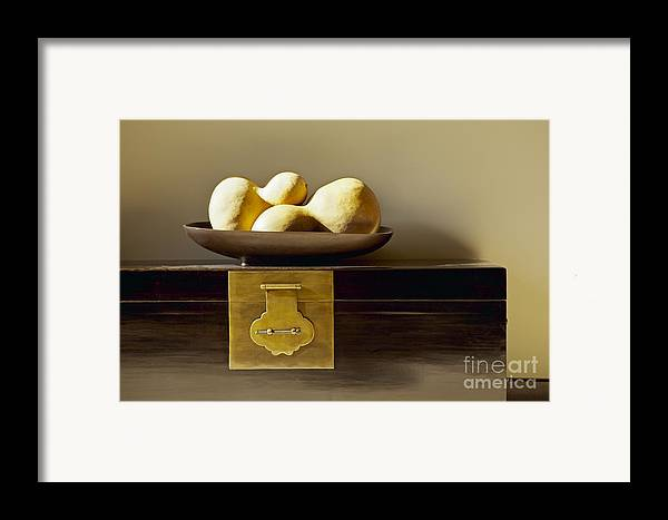 Beige Framed Print featuring the photograph Gourds Still Life I by Kyle Rothenborg - Printscapes