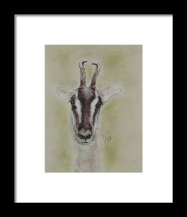Gazelle Framed Print featuring the drawing Graceful Flyer by Cori Solomon