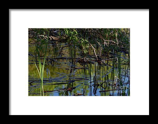 Grand Beach Marsh Manitoba Canada Framed Print featuring the photograph Grand Beach Marsh by Joanne Smoley