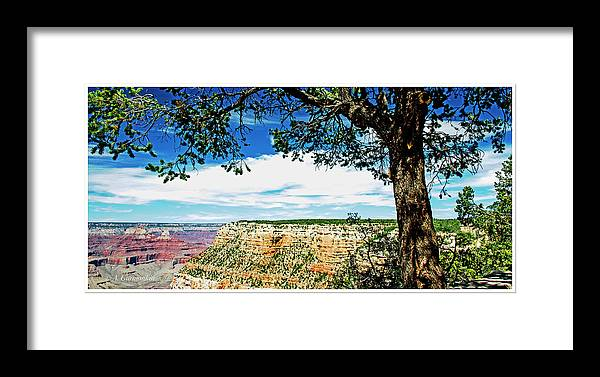 Grand Canyon National Park Framed Print featuring the photograph Grand Canyon View From South Rim Overlook by A Gurmankin